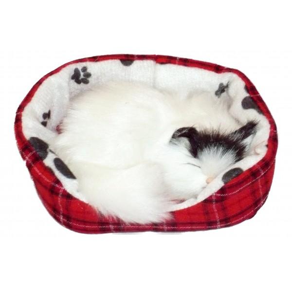 Top des gadgets pour chats les plus cools, inutiles donc - Topito