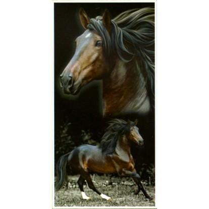 Serviette de plage 2 chevaux