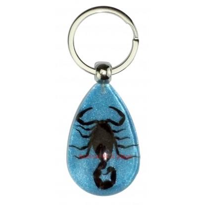 Porte clefs avec véritable scorpion bleu, idée cadeau pas cher.