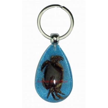 Porte clefs bleu avec véritable crabe - idée cadeau pas cher.