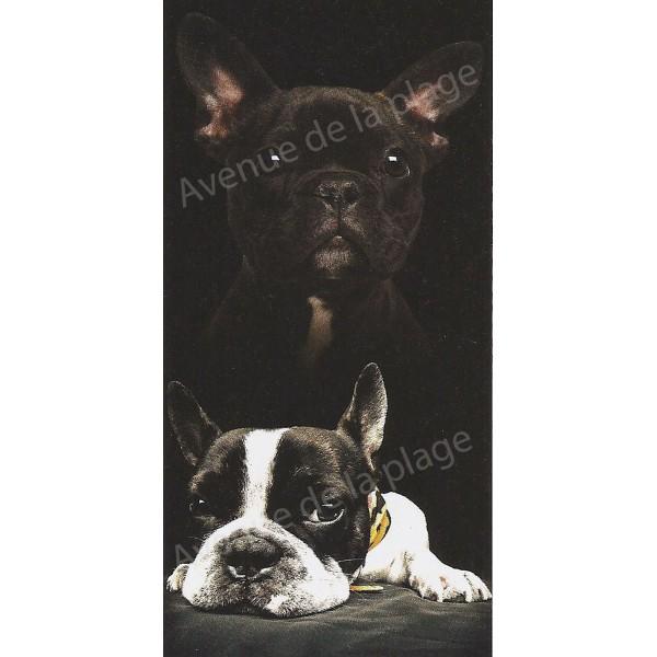 serviette de plage bulldog achat vente drap de bain bouledog pas cher. Black Bedroom Furniture Sets. Home Design Ideas