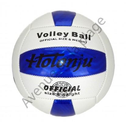 Ballon de volley Ball bleu et blanc - Beach Volley