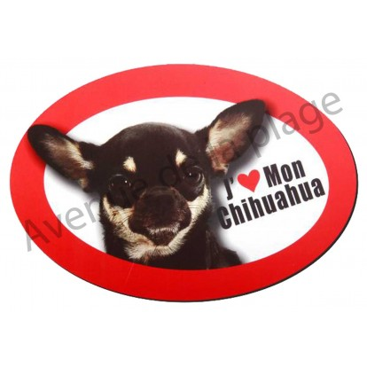 Magnet J'aime mon Chihuahua tricolore.