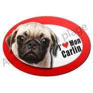 Magnet J'aime mon Carlin