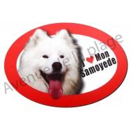 Magnet J'aime mon Samoyede