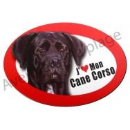 Magnet J'aime mon Cane Corso