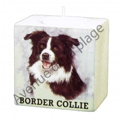 Bougeoir chien - Border Collie