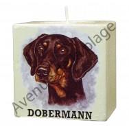 Bougeoir chien - Dobermann