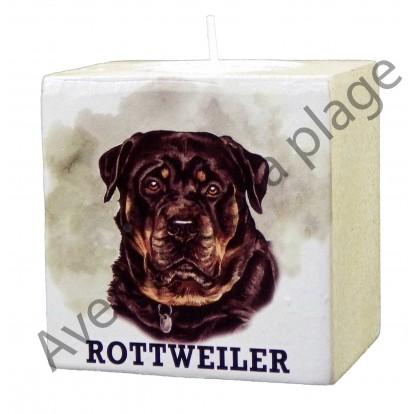 Bougeoir chien - Rottweiler modèle B.