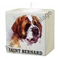Bougeoir chien - Saint Bernard