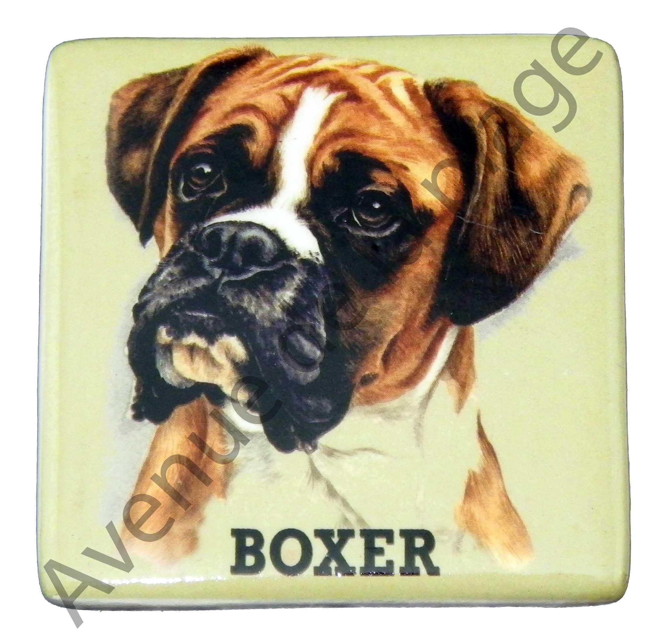 boxer pas cher gallery of diesel lot de boxers rays bleu diesel pour pas cher with boxer pas. Black Bedroom Furniture Sets. Home Design Ideas