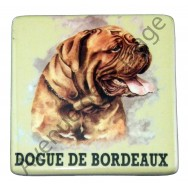 Magnet chien Dogue de Bordeaux