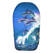 Bodyboard dauphins dans les vagues