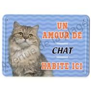 Pancarte métal : Un amour de chat Maine Coon habite ici