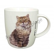 Mug chat Maine Coon assis