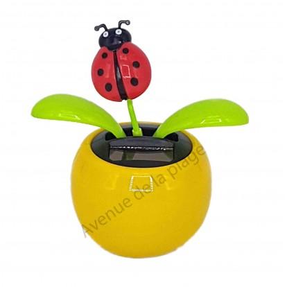 Plante solaire avec coccinelle qui se balance, pot jaune, modèle D.
