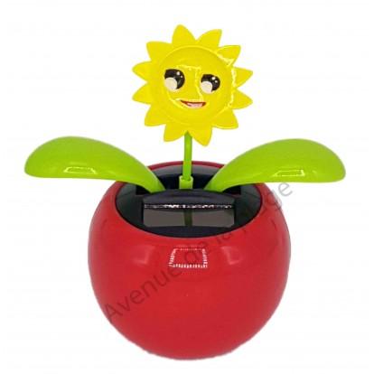 Plante solaire avec soleil qui se balance D
