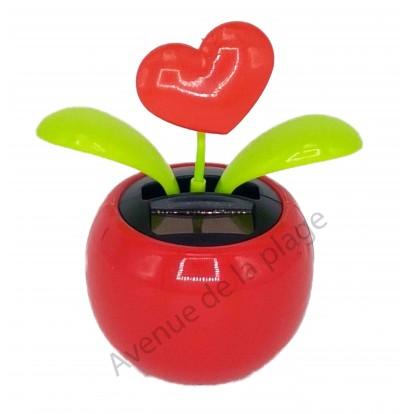 Plante solaire coeur rouge qui se balance
