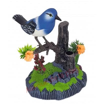 Oiseau bleu sur branche sonore