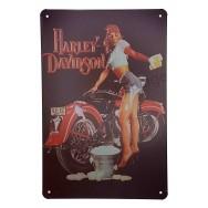 Plaque vintage moto Harley Davidson et Pin-Up
