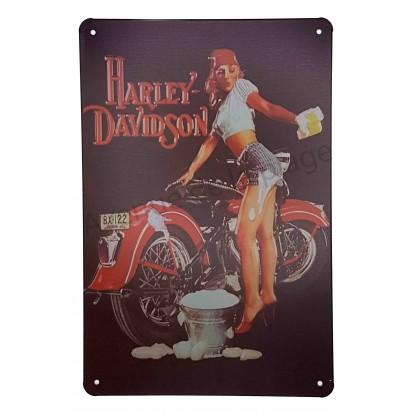 Plaque vintage moto Harley Davidson nettoyée par une Pin-Up