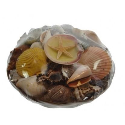 Panier de coquillages