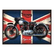 Plaque carton vintage moto Triumph Tiger 100