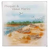 Dessous de plat Phoques et veaux marins