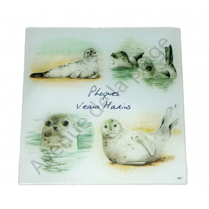 Dessous de plat Phoques veaux marins