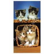 Serviette de plage chatons dans un panier