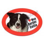 Magnet J'aime mon Border Collie