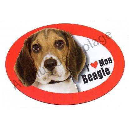 Magnet J'aime mon Beagle