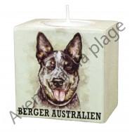 Bougeoir chien - Berger Australien