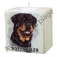 Bougeoir chien - Rottweiler