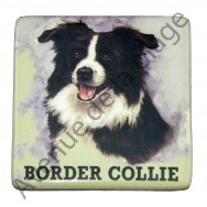 Magnet chien Border Collie