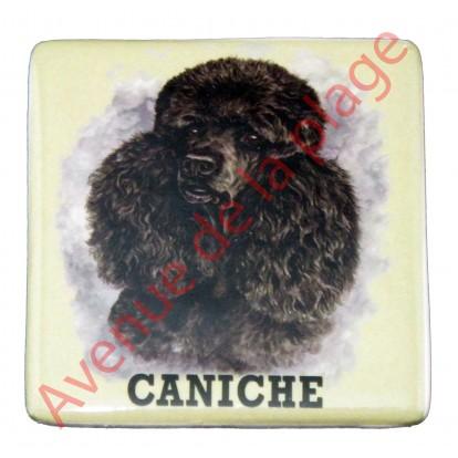Magnet chien Caniche