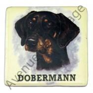 Magnet chien Dobermann