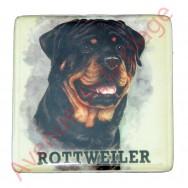 Magnet chien Rottweiler
