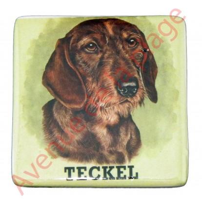 Magnet chien Teckel à poil dur.