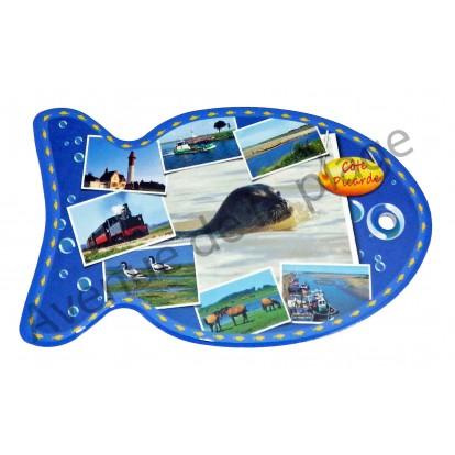 Dessous de plat poisson Côte Picarde - Baie de Somme