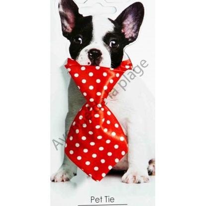 Cravate pour chien rayée rouge et pois blancs.