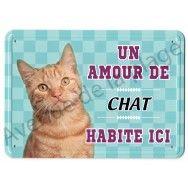 Pancarte métal : Un amour de chat gingembre habite ici