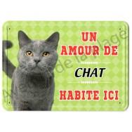 Pancarte métal : Un amour de chat gris habite ici