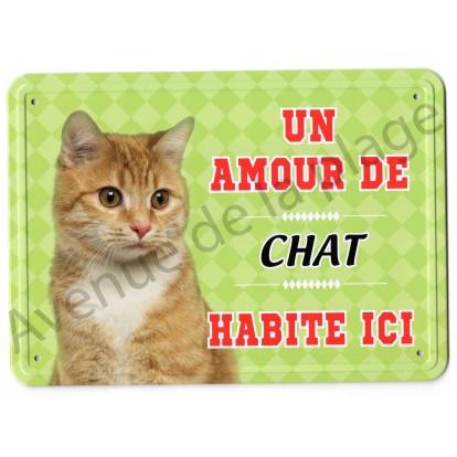Pancarte métal : Un amour de chat roux habite ici