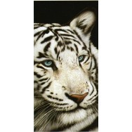 """Serviette de plage """"Tigre blanc aux yeux bleus"""""""