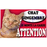 Plaque Attention Je monte la garde - Chat Gingembre