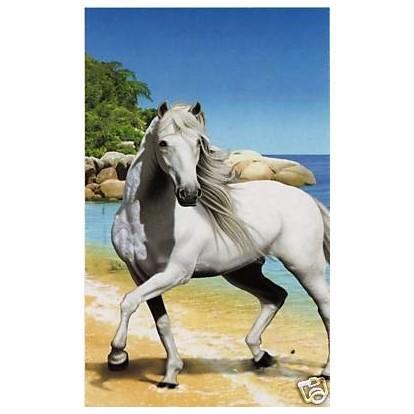 drap de plage cheval blanc serviette de plage pas ch re. Black Bedroom Furniture Sets. Home Design Ideas