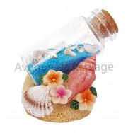 Coquillages sur la plage avec bouteille de sable
