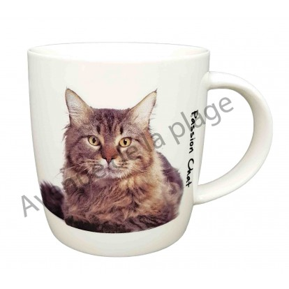 Mug chat Maine Coon couché