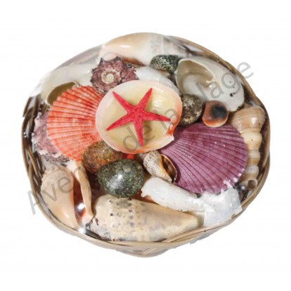 Panier de coquillages 15 cm